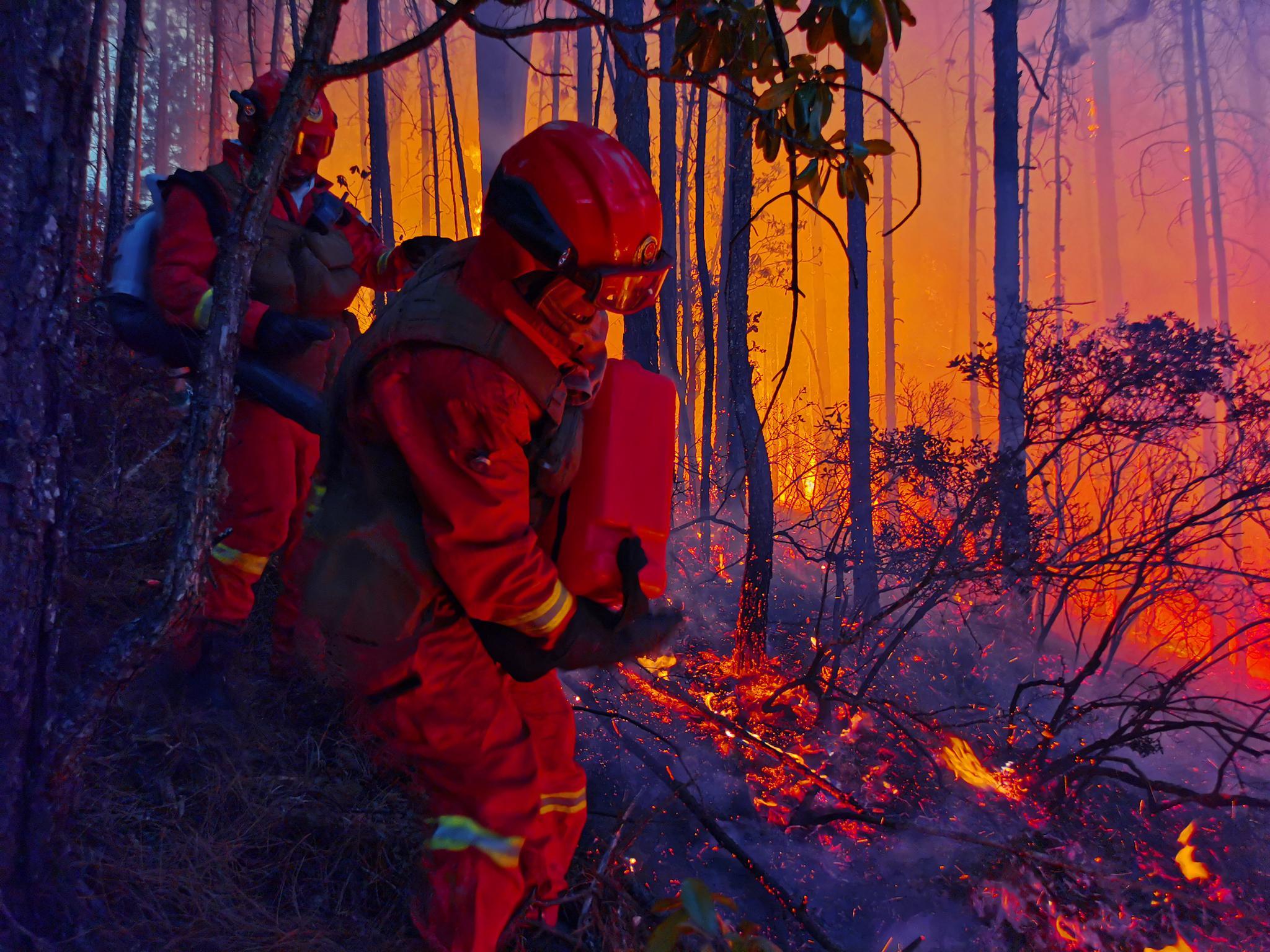 云南香格里拉森林火灾明火已全部扑灭