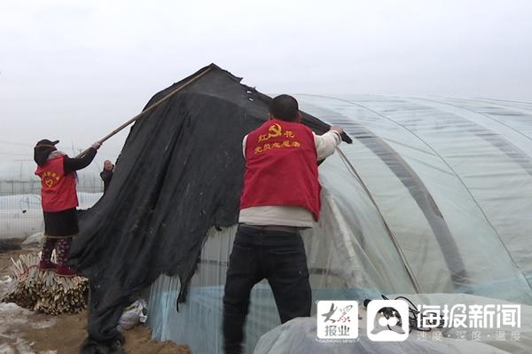 """零下十六度的""""温暖"""":临沂小庄村志愿服务队心系百姓大棚"""