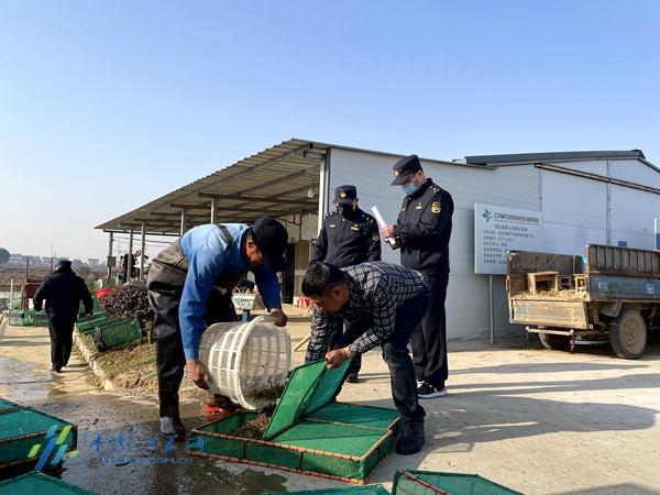 南京高淳:开展专项执法行动 护航农产品质量安全