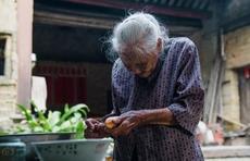 智能+专人 为老城厢独居老人织起关爱网