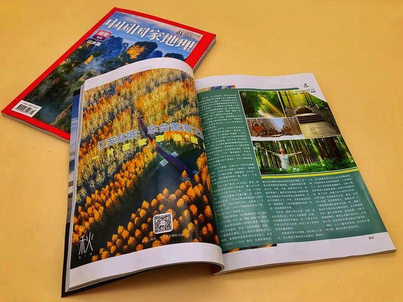 """《中国国家地理》这样介绍这片有故事的""""森林"""""""
