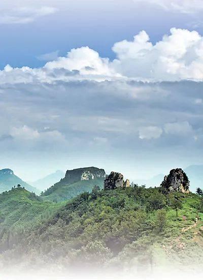 人民日报点赞山东林长制:沂蒙山 再多一分绿