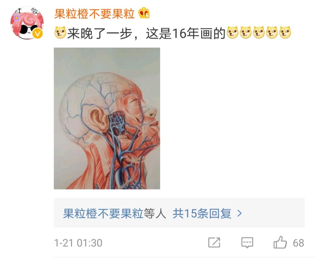 兰大医学院学生手绘解剖图走红网络
