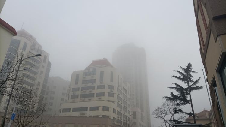"""大雾来袭,弱冷空气今夜或来青""""骚扰"""""""
