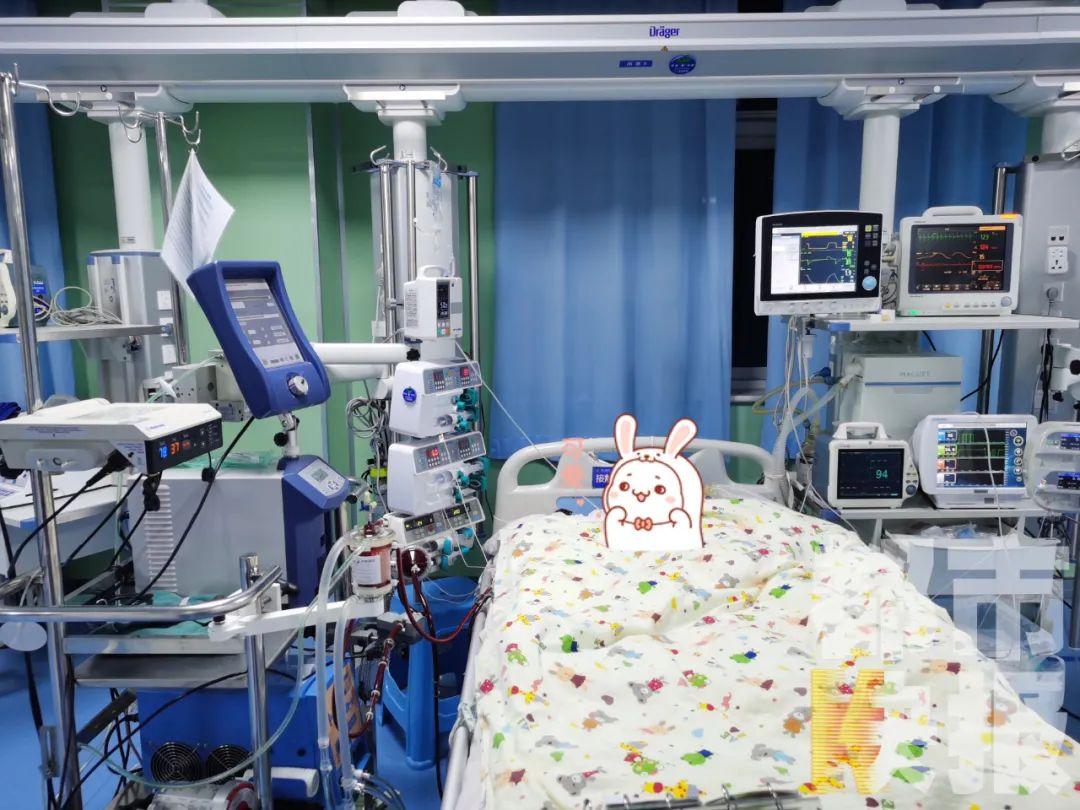 """西安5岁女孩""""暴心病"""",ECOM四天奇迹生还!医生紧急提醒!"""