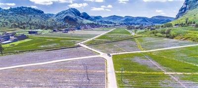 毕节市:2020年坝区平均亩产值突破万元