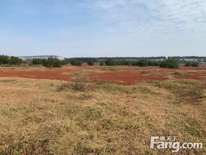 湛江市徐闻县2宗工业用地挂牌出让 总出让面积为23914.3平方米