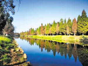 度假区打造滇池最美湖滨生态带