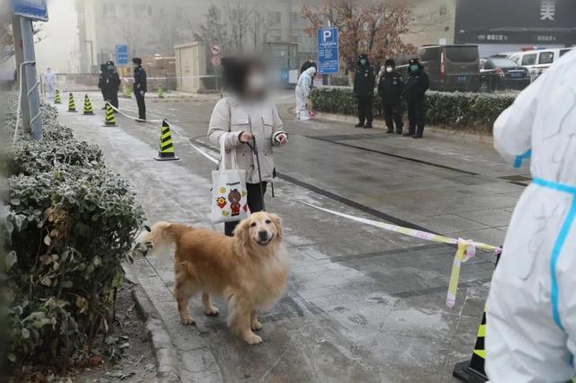 直击北京大兴天宫院融汇小区人员及宠物转运现场,已转运1388人图片