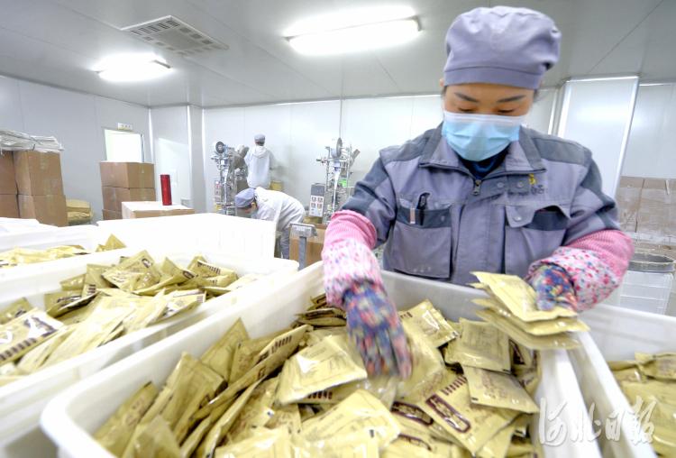 河北安国:中药材产业链不断延伸