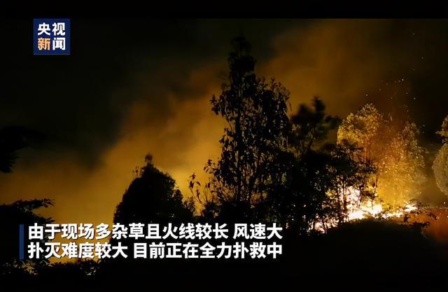 福建龙岩永定区湖山乡漳溪村发生山火 过火面积已超20亩