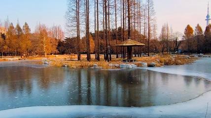 顺成视界|遭遇零下十八度 青岛中山公园湖面呈现罕见封冻景观