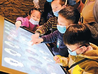 河南博物院历时5年改造后全面开放:全面展现中原文化 特色展览亮点纷呈