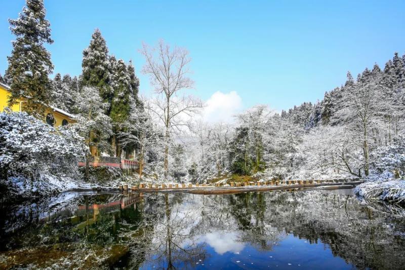 即日起至2月28日门票半价,快来天台山玩雪!
