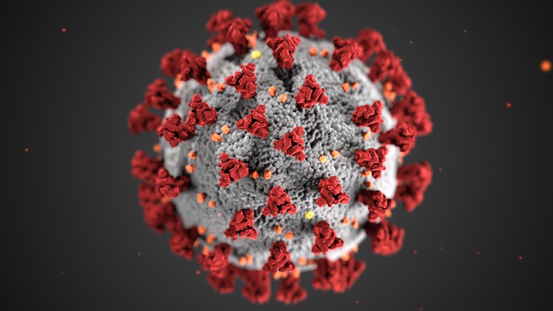 《纽约客》:美国政府在疫情面前 彻底投降了