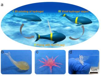 中科院兰州化物所王晓龙团队实现双网络水凝胶的3D打印,高强韧性、制备方便性凸显 | 专访