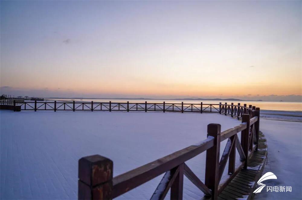 组图|万亩松林、金黄芦苇、北美冬青......威海南海新区的白雪和彩色更配!