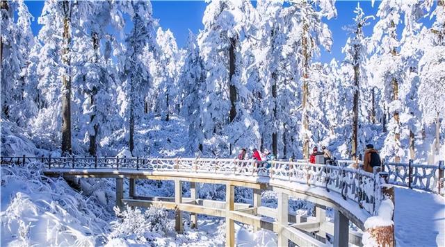 四川冰雪和温泉旅游节看点