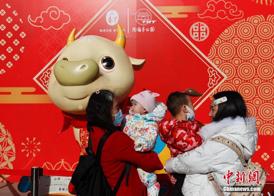 北京陶然亭公园游客乐享春节假期