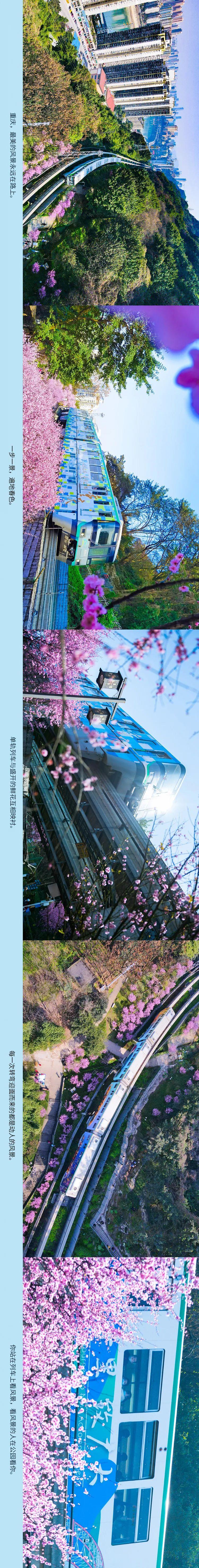 开往春天的列车,从重庆开向世界图片