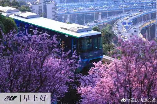 """重庆""""开往春天的轻轨""""撞上无人机图片"""