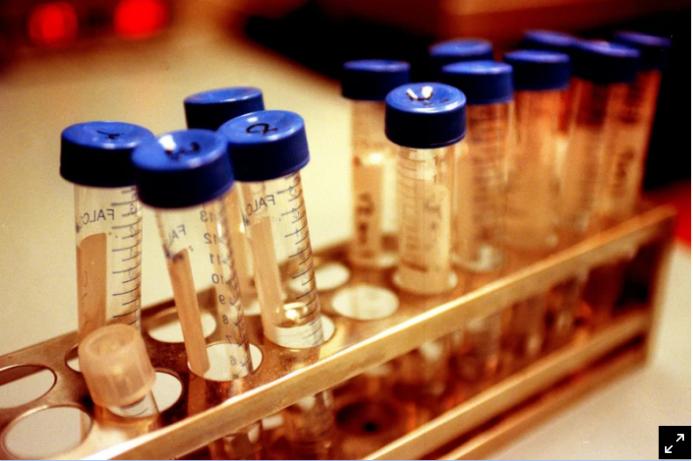 百名患者对澳大利亚Monash IVF 发起集体医疗诉讼