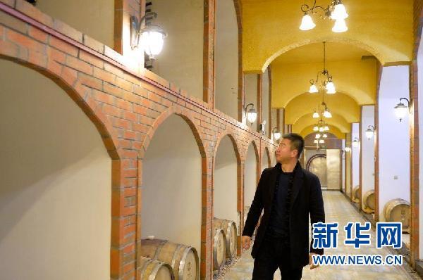 酿酒师李财在酒窖里检查储存的葡萄酒(1月6日摄)。新华社记者 唐如峰 摄