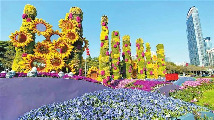 深南大道花卉景观。