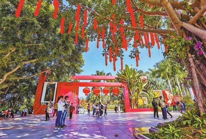 莲花山公园的正门和树上,红灯高高挂起,一片喜气洋洋。