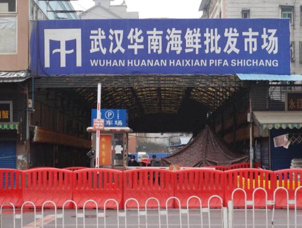 世卫专家组在武汉调查有了结论!下一站该去美国了吧图片
