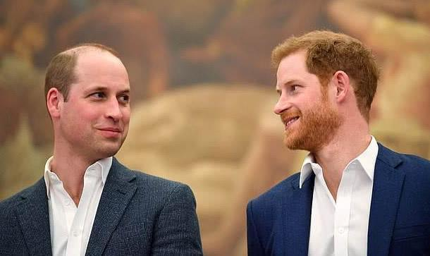 威廉王子:我们不是种族主义者家庭 还没和哈里交谈过