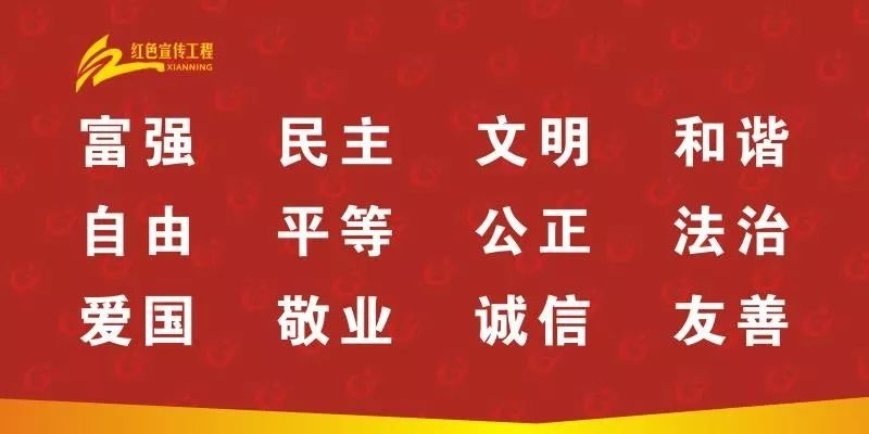 """守护安全,畅通消费——崇阳县法院开展""""3·15消费者权益日""""普法宣传活动"""