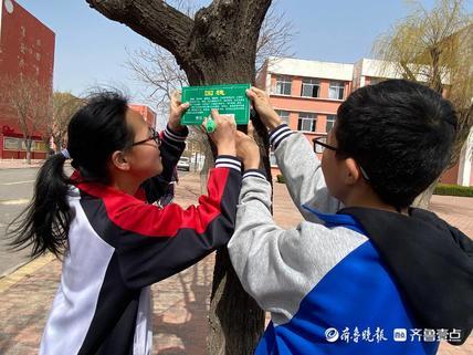 """大码头镇西刘桥初级中学开展""""认养一棵树,呵护一片绿""""活动"""