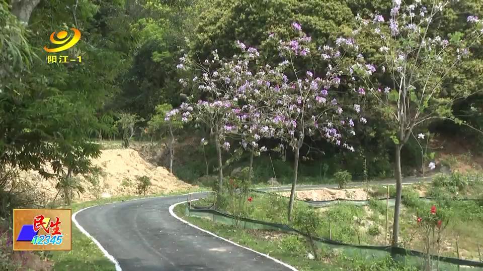 阳西塘口桐油山建起绿道