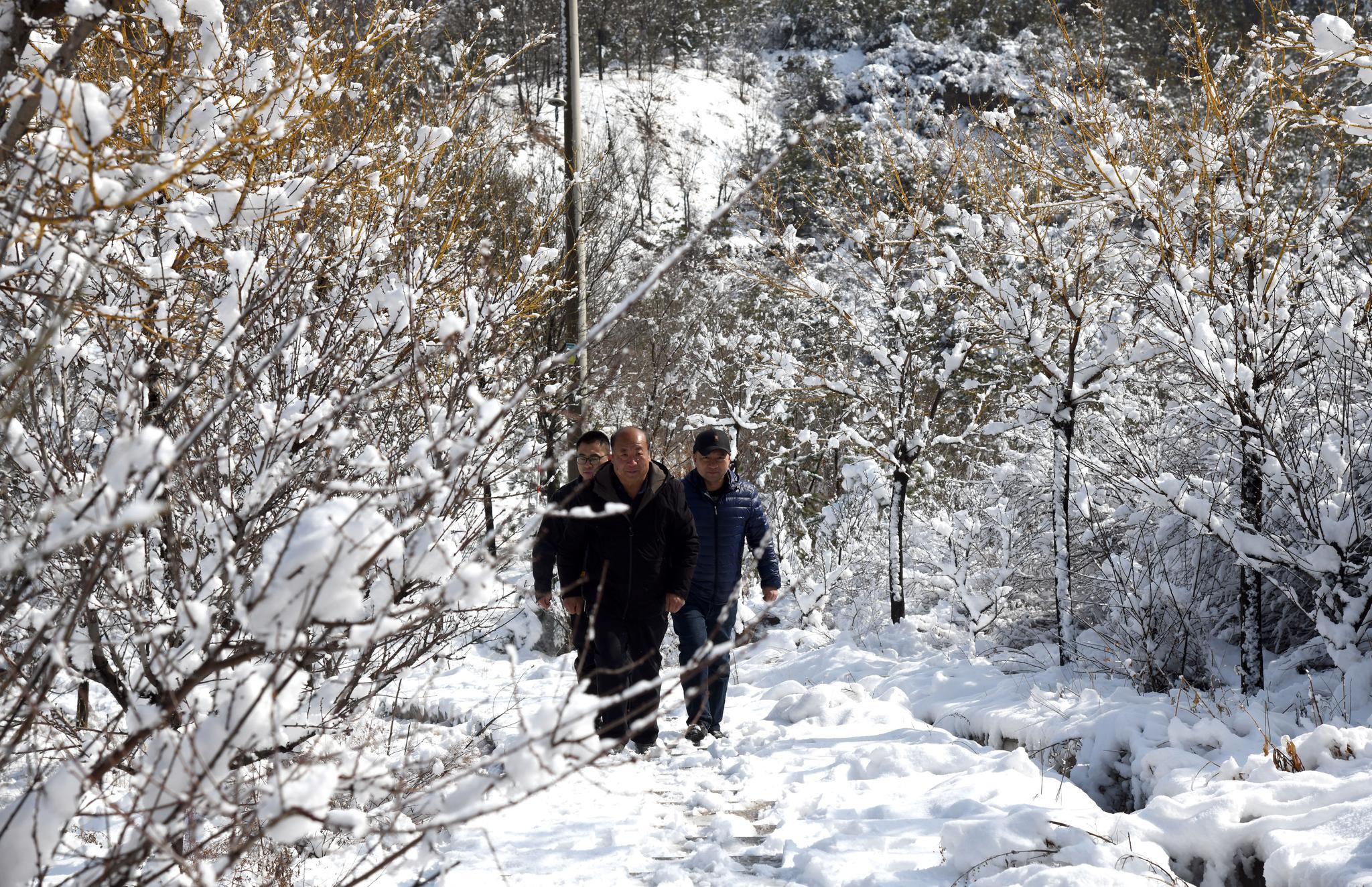 2月27日至5月31日,太原小店对东山区域实施封山禁火