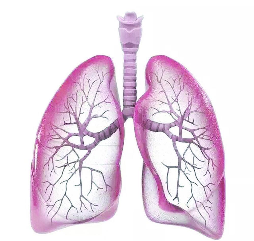 除了肺结核 你对气管支气管结核了解多少?
