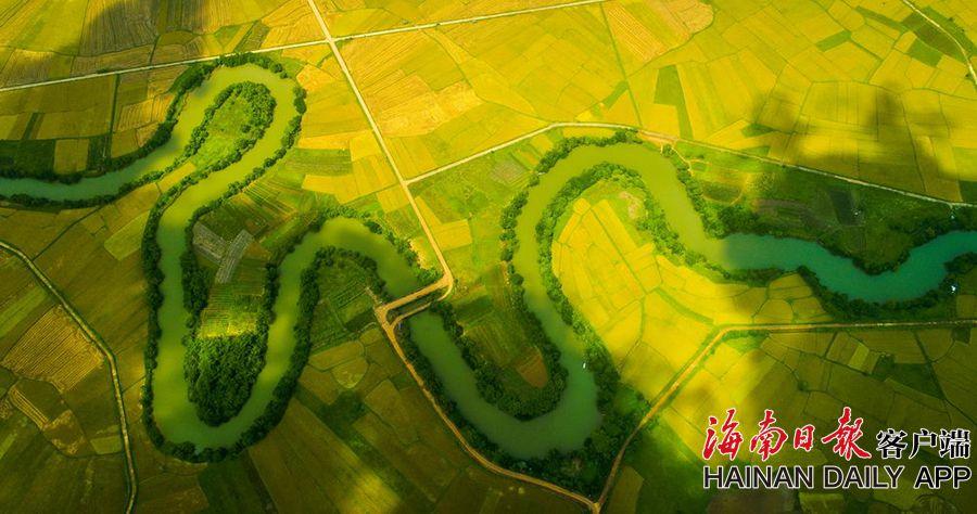 海南推进实施垦区土地综合整治 严守耕地和生态保护红线