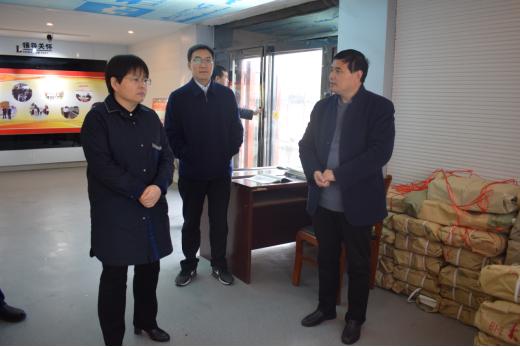 南阳市方城县委副书记李霞一行到杨楼镇调研指导工作