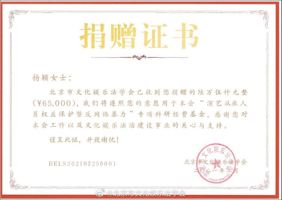 """杨颖捐赠名誉权案获赔款6万元,支持""""反网络暴力""""专项研究"""