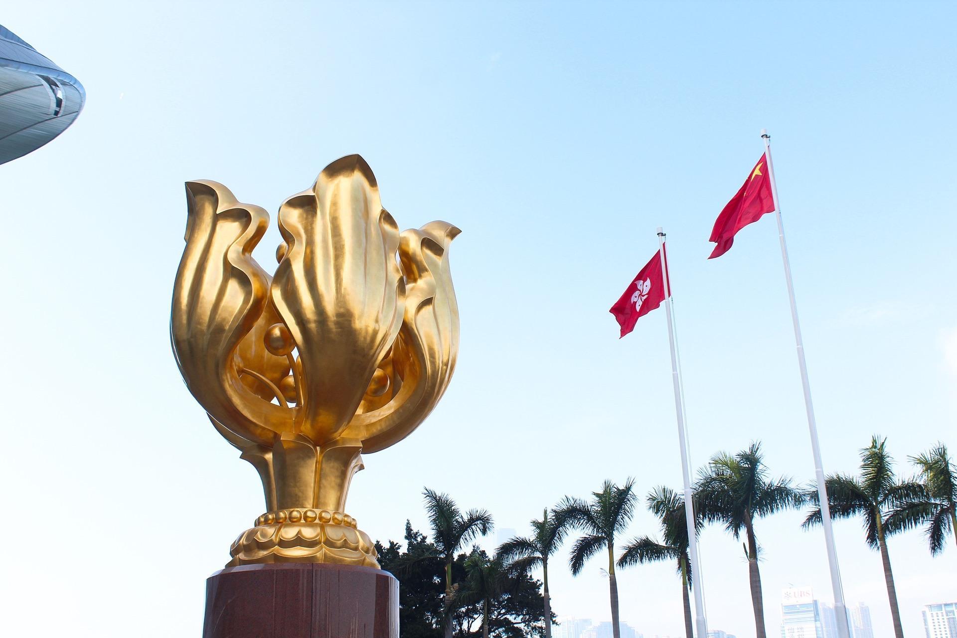 视频|问政中国|田飞龙:选委会重构可防范现行制度弊病图片