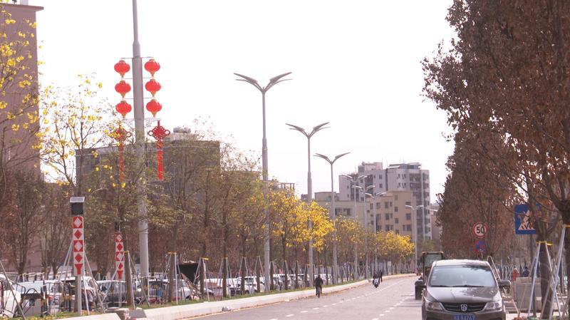 深圳宝安区加速推动多功能智能杆建设