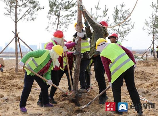 潍坊滨海区弥河生态绿廊综合治理工程加速推进
