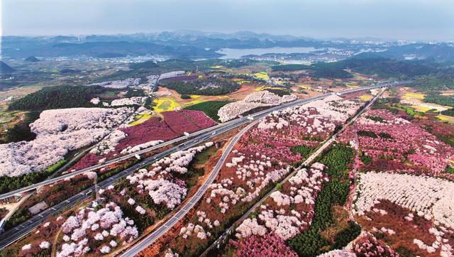 中国日报网:贵阳农村电商为乡村振兴插上金翅膀