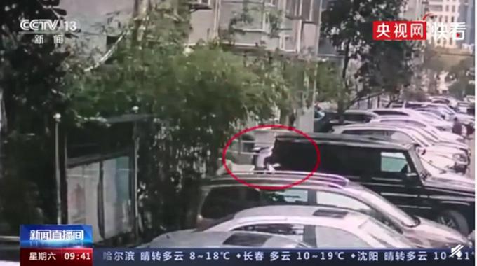 男子高空抛垃圾袋砸伤邻居,获刑8个月