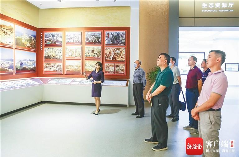 海南省自然资源和规划厅两个党支部联合开展主题党日活动
