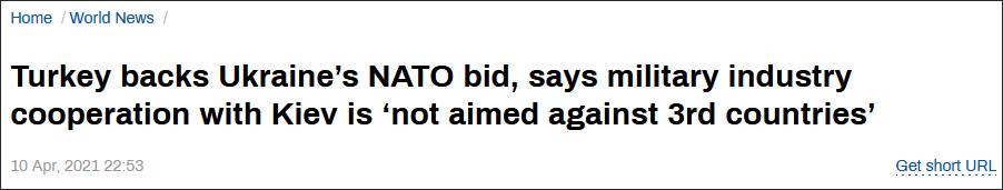 埃尔多安:支持乌克兰加入北约