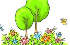 东营市自然资源和规划局完成全市植物资源调查