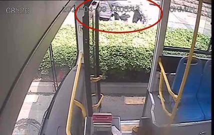 老人骑电动车一头栽进花坛,公交驾驶员举动暖心了