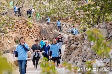 平度大泽山登山节启动 活动持续到5月底