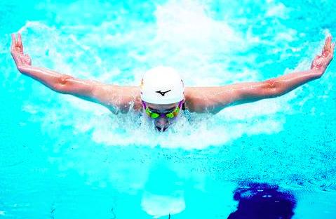 确诊白血病792天后强势归来,池江璃花子狂揽四项日本全国冠军